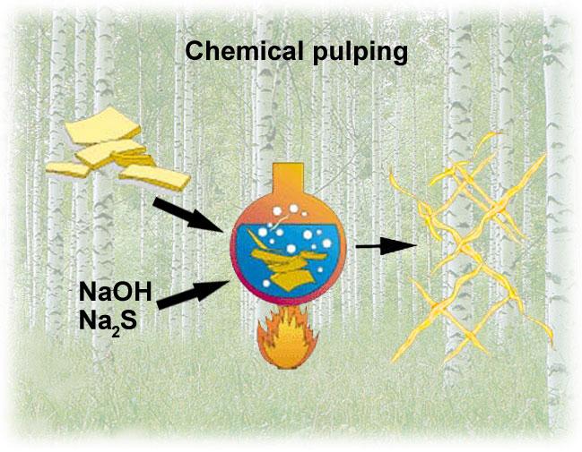 chemical pulping principle